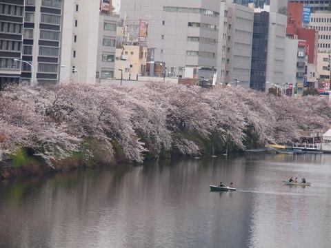 032308sotobori.jpg